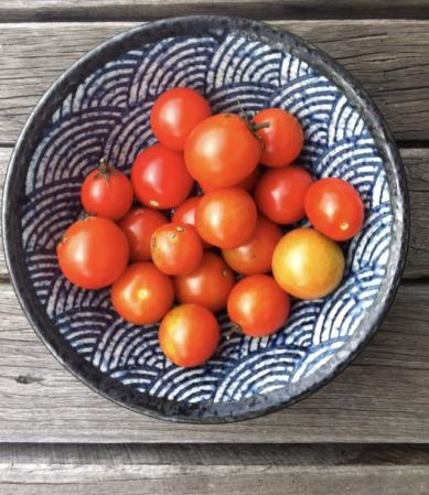 cherry tomatoes - winter